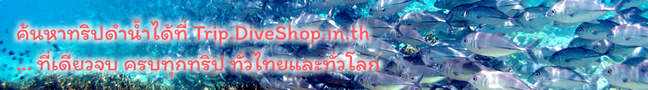 Ads Banner for Trip.DiveShop.in.th